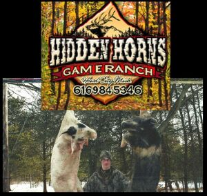 (351) Hog Hunt at Hidden Horns. This is good for a Hog Hunt for 2 hunters at Hidden Horns Game Ranch in Sand Lake, MI. With an additional paid hunter you can receive one free overnight along with breakfast.